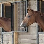 Stable & yard