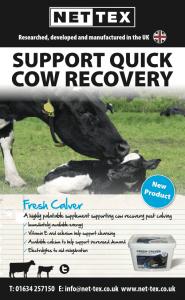 Nettex fresh calver