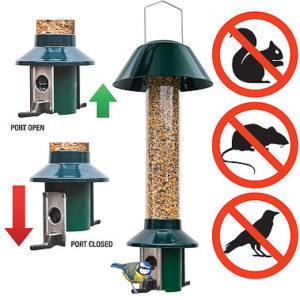Pest off wild bird feeder